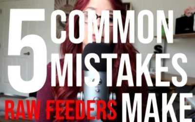 5 Common Mistakes Raw Feeders Make