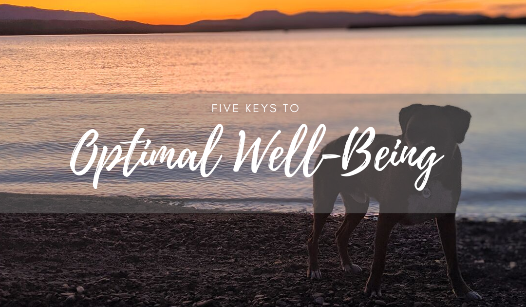Keys to Optimal Canine Well-Being